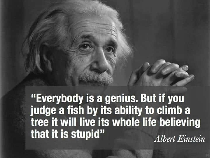 Albert Einstein Quotes  2 Einstein Quotes