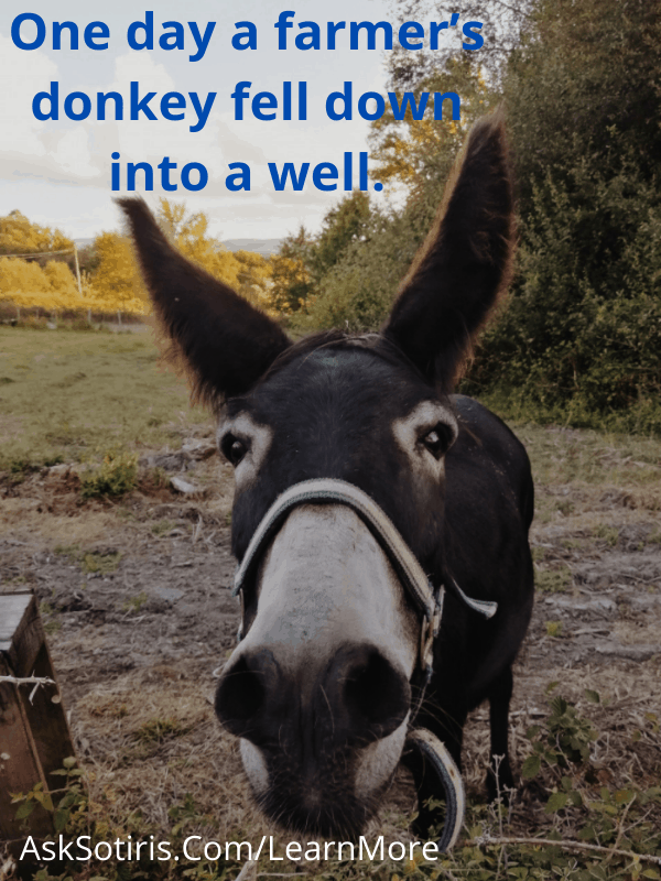 One day a farmer's donkey fell down into a well.